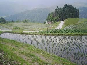 20060613