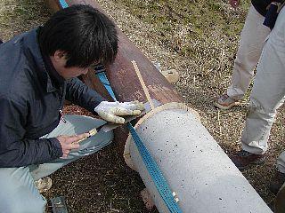 20070222f