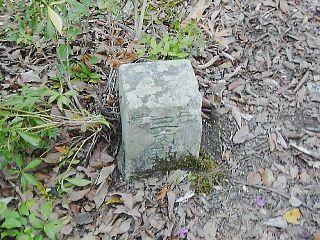 20070429d